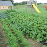 Longview Farm, LLC
